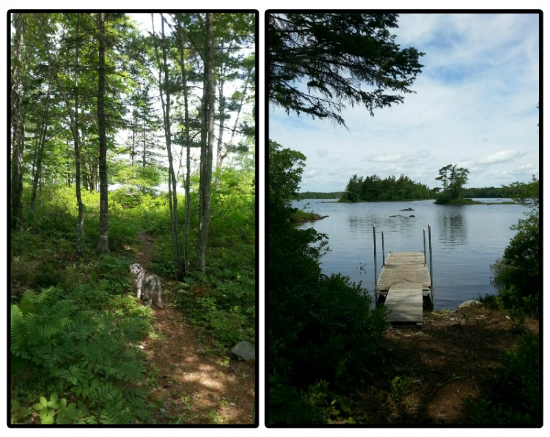Path and Dock-A